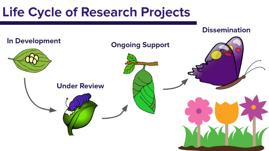 life cycle of research