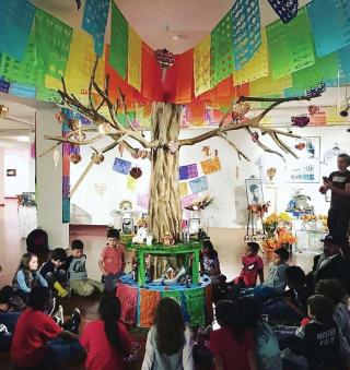 Classroom with an indoor tree surrounded by elementary school students