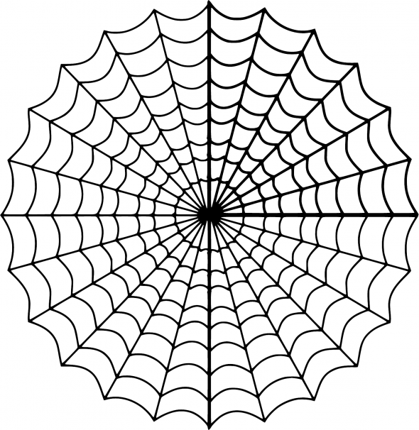image of a spider web - pun on website