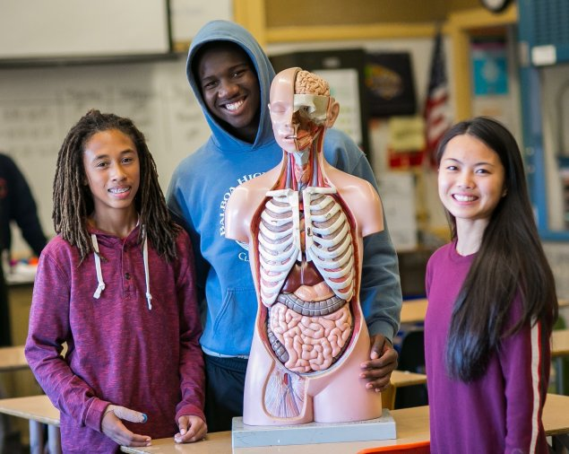 High school students with model of human body