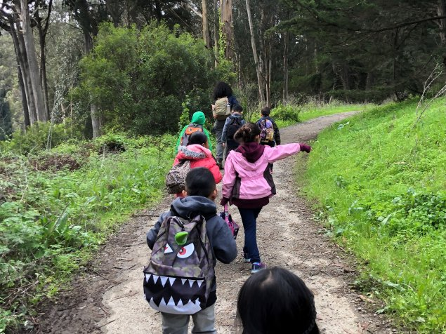Students walking on a nature path