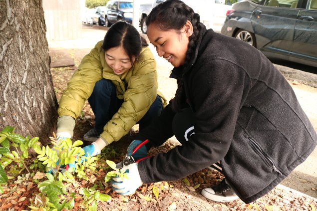 Two students on a job shadow helping plant trees.