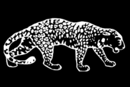 Drawing of a leopard